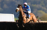 Taunton Races 220415