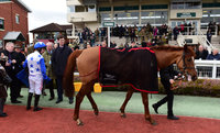 Taunton Races 270115