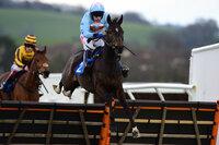 Newton Abbot Races 250315