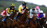 Newton Abbot Races 250315