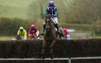 Black Forest Point-to-Point 291115