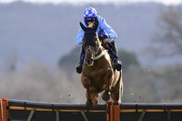 Taunton Races, Taunton, UK - 15 Mar 2021