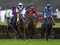 Horse Racing at Exeter