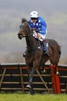 Taunton Races 070416