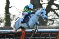 Taunton Races 020216