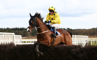 Exeter Races 300316
