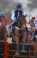 Newton Abbot Races 260315