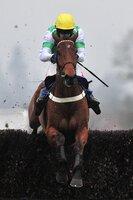 Taunton Races 270117