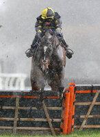 Exeter Races, Exeter, UK - 21 Mar 2017