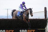 Exeter Races, Exeter, UK - 26 Nov 2017