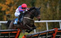 Taunton Races, Taunton, UK - 16 Nov 2017