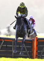 Exeter Races, Exeter, UK - 1 Jan 2018