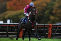 Exeter Races, Exeter, UK - 6 Nov 2018