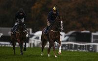 Exeter Races, Exeter, UK - 14 Nov 2018