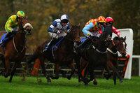 Taunton Races, Taunton, UK - 15 Nov 2018