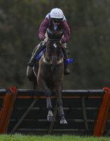 Taunton Races, Taunton, UK - 29 Nov 2018