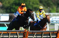 Newton Abbot Races, Newton Abbot, UK - 1 Oct 2018