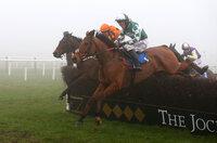 Exeter Races, Exeter, UK - 22 Feb 2019
