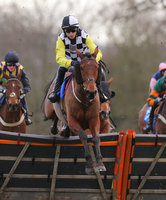 Taunton Races, Taunton, UK - 28 Feb 2019