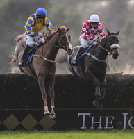 Exeter Races, Exeter, UK - 1 Jan 2019