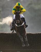Exeter Races, Exeter, UK - 1 Jan 2019