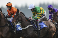 Exeter Races, Exeter, UK - 20 Jan 2019