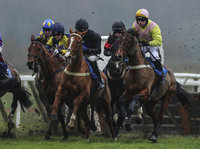 Exeter Races, Exeter, UK - 20 Jan 2019