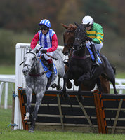 Exeter Races, Exeter, UK - 5 Nov 2019
