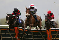 Taunton Races, Taunton, UK - 30 Oct 2019