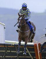 Taunton Races, Taunton, UK - 10 Dec 2020