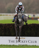 Exeter Races, Exeter, UK - 21 Feb 2020