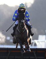 Exeter Races, Exeter, UK - 21 Jan 2020