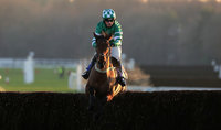Exeter Races, Exeter, UK - 21 Jan 2020