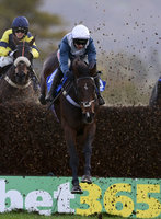 Taunton Races, Taunton, UK - 28 Oct 2020