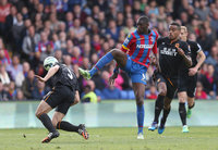 Crystal Palace v Hull City 250415