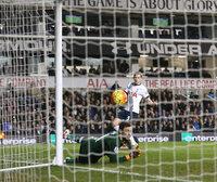 Tottenham Hotspur v Newcastle United 131215