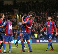Crystal Palace v Newcastle United 281115