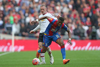 Crystal Palace v Manchester United 210516