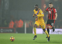 AFC Bournemouth v Crystal Palace 310117