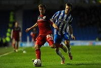Brighton v Bristol City 271112