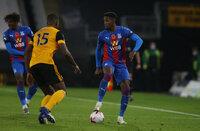 Wolverhampton Wanderers v Crystal Palace, Wolverhampton - 30 October 2020