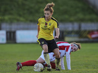 Buckland Athletic LFC v Cheltenham LFC, Newton Abbot, UK - 11 No