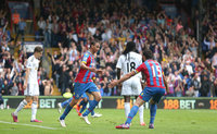 Crystal Palace v Swansea City 240515