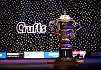 Crufts 2019 - Best in Show