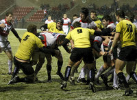 Gael Force v Plymouth Albion 260210