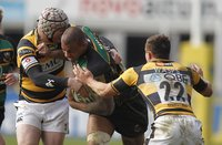 Northampton v Wasps 270311