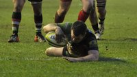 Harlequins v London Welsh  260113