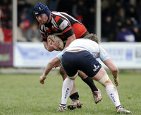 Cornish Pirates v Bedford Blues 310313