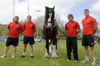 Cornish Pirates  Horse Pull