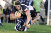 Cornish Pirates v Bedford Blues 221114